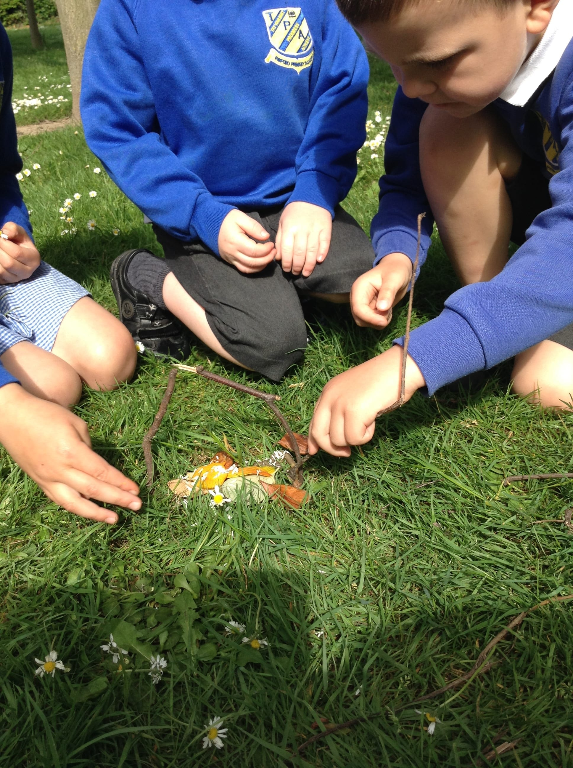 Reception pupils create insect dens