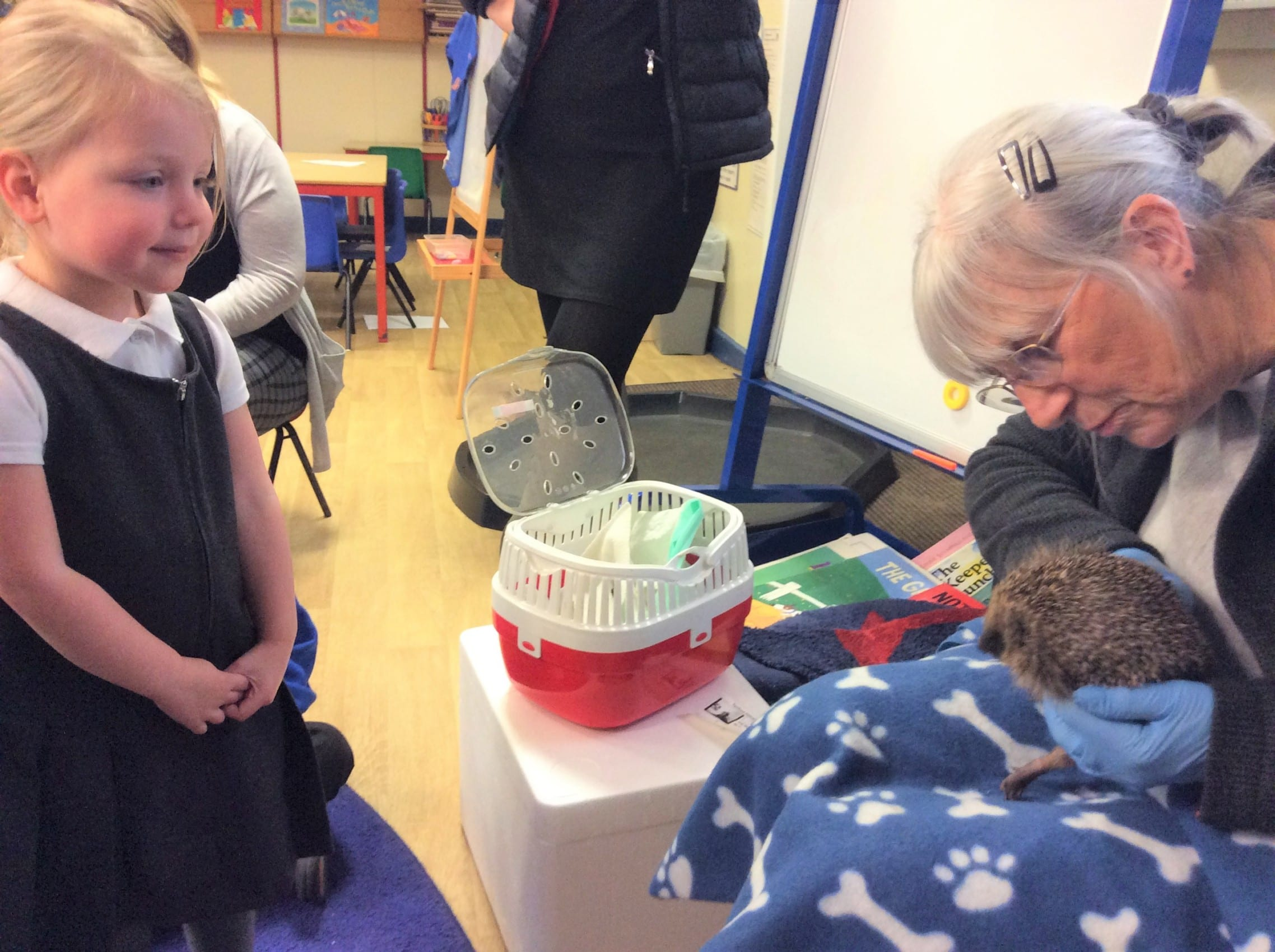 Nursery pupils enjoy Hedgehog Rescue visit